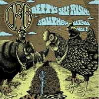 Chris Robinson Brotherhood - Bettys Self-Rising Southern Blends Volume 3