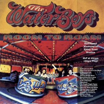 The Waterboys - Room To Roam (Half Speed Master)